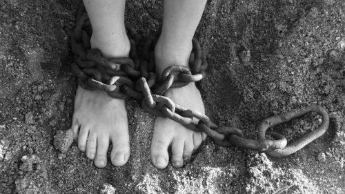 実習生は奴隷
